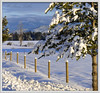 Center Valley Winter Fence (Explored - Front Page) (misst.shs) Tags: winter snow mountains tree sunshine fence nikon snowy explore northidaho d90 cabinetmountains explored ~~fencefriday~~ fenchfriday centervalleyrd