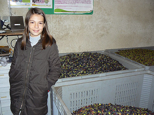zoé et les olives.jpg