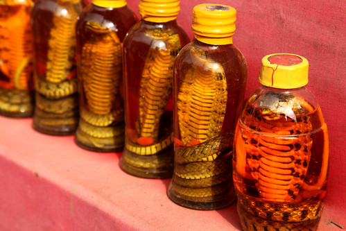 Snake oil, Sapa by Jeremy Weate, on Flickr