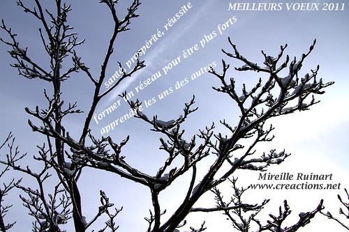 Meilleurs-voeux-2011_mireille_Ruinart_Creactions6