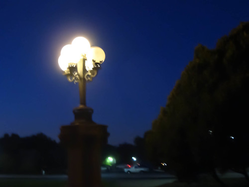 Stanford lamp post by night