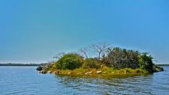 La isla del Gallo (GabrielRendon) Tags: mxico gallo oaxaca isla puertoescondido manialtepec gabrielprezrendn sanjosmanialtepec gabrielrenndn