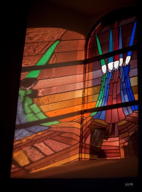 Sortie 3ème anniversaire le 16 janvier 2011 à Marche en Famenne : Les photos 5360708551_79929c5531_z