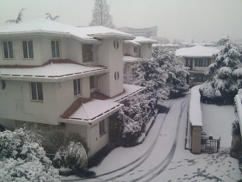 More snow in Shanghai today