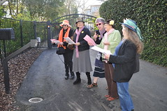 "Raging Grannies Deliver Chevron's ""Corporate Hall of Shame"" Certificate to CEO John Watson's House (Rainforest Action Network) Tags: ca lafayette event ceo delivery chevron raginggrannies johnwatson inductee changechevron corporatehallofshame"
