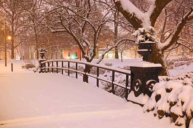 Lafayette Park, in Saint Louis MIssouri, USA - bridge, at night, in the snow