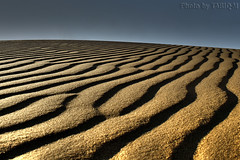 Sand Texture HDR- Explore Front Page (TARIQ-M) Tags: shadow texture landscape sand waves desert ripple dunes ripples riyadh saudiarabia hdr app  canonefs1855 newvision       canon400d        tariqm  tariqalmutlaq peregrino27newvision kingofdesert 100606169424624226321postsnajd12sa