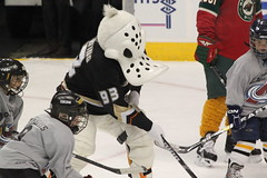 Wild Wing....mascot for the Anaheim Ducks (Hazboy) Tags: wild usa west ice sports hockey sport america nhl la us duck los colorado angeles wing center denver mascot kings national skate western pepsi league avs avalanche lnh ホッケー хоккей hazboy hazboy1 használatos