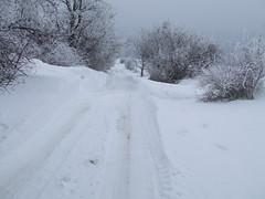 Ekkora hófalon keltünk át