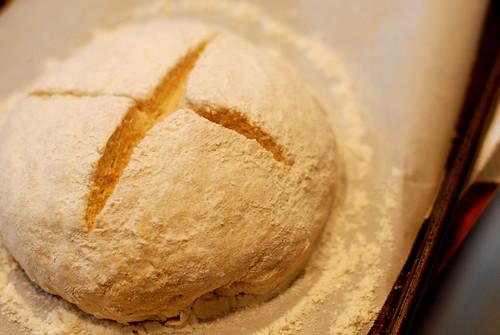 v like bread for jam 008