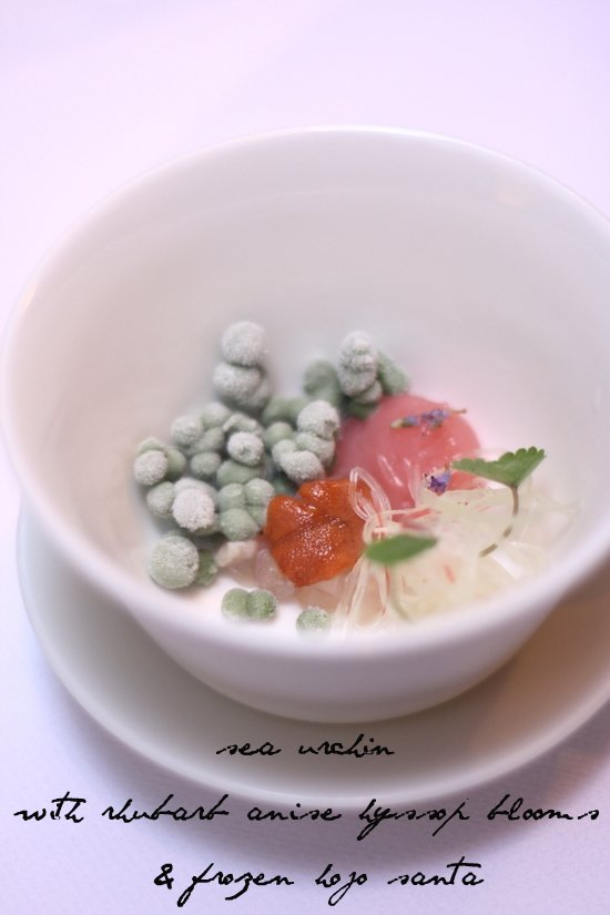 sea urchin with rhubarb anise hyssop blooms & frozen hojo santa