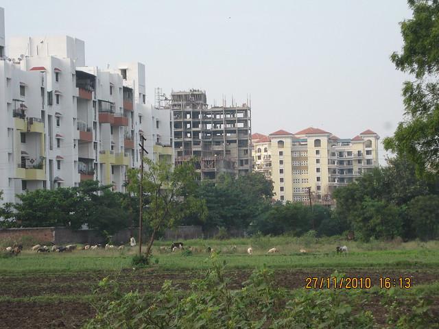 Visit to Kumar Pebble Park, Handewadi Road, Hadapsar Pune IMG_4219