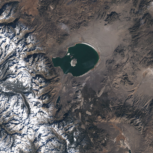 Newly Discovered Microbe Found at Mono Lake, California