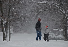Snow (AstridWestvang) Tags: people snow forest father son snowing beech larvik bkeskogen