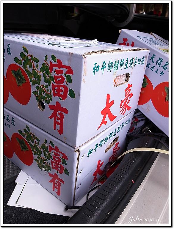柿子 (1)