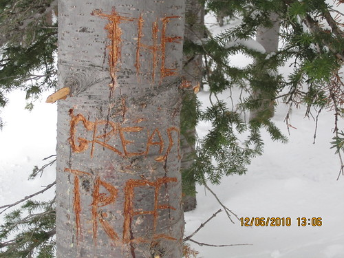 the grease tree