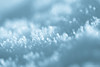 Fresh Mint - Frosty mornings I (Marc Benslahdine) Tags: macro jardin bleu neige glace givre lightroom glacial menthe fraicheur canonef100mmf28macrousm canoneos50d marcopix ©marcbenslahdine matinsgivrés marcopixcom