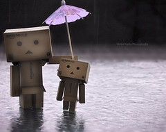 It's Raining Again (Violet Kashi) Tags: rain japan umbrella comics toy robot nikon dof manga explore frontpage hmm purplerain supertramp yotsuba danbo herecomestherainagain d90 revoltech   macromondays lightroom3 kiyohikoazuma