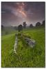 A Foggy Morning on the Farm (danishpm) Tags: trees mist green grass fog clouds sunrise canon landscape soft australia wideangle deadtree nsw aussie aus 1020mm soren manfrotto murwillumbah sigmalens eos450d martensen 450d tweedshire tweedarea hitechgradfilters 09ndreversegrad