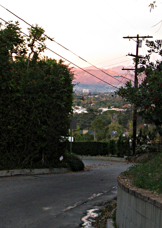 the hills in los angeles+pink sunset+residential