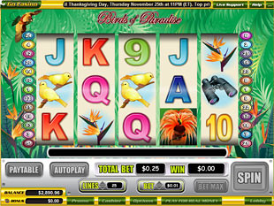 Birds of Paradise slot game online review