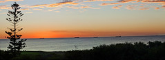 Sunset over Cottesloe_Panorama