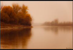 River in Autumn (Paul Fenis) Tags: italien autumn trees italy nature water fog alberi river geotagged reflex nikon italia artistic fiume natura emilia nebbia acqua piante autunno riflessi italie jol emiliaromagna reggioemilia d90 p voxpopuli brescello mywinners coloriautunnali boretto nikond90 fiumep flickraward concordians betterthangood theperfectphotographer goldstaraward dragongoldaward spiritofphotography paulfenis feelingroup oltusfotos artofimages theauthorsplaza flickraward5 mygearandmepremium mygearandmebronze