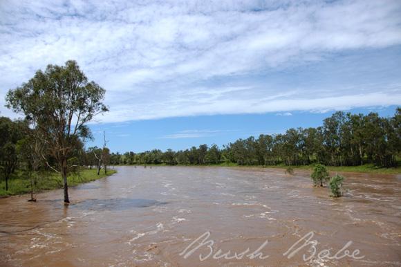 flood_0557