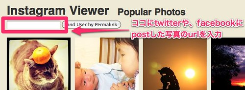 Popular Photos - Instagram Viewer