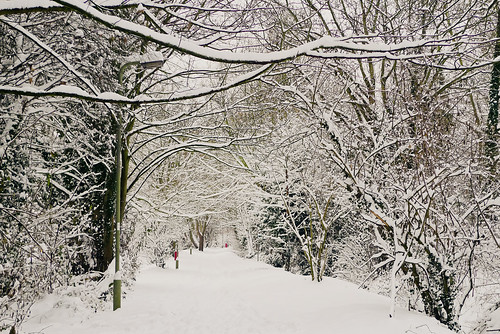 Snowy path by Cowley Marsh Park