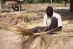 Burkina Faso - lavorazione della paglia (Il Sole Onlus) Tags: africa bambini donne acqua burkinafaso scuola pozzo infanzia tessitura microcredito
