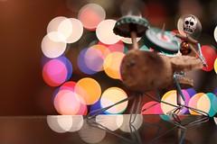 7D - La Prima Foto (sgrazied) Tags: bokeh rimini colori alberodinatale romagna batterista sgrazied macchinanuova canoneos7d creazioneconspranga