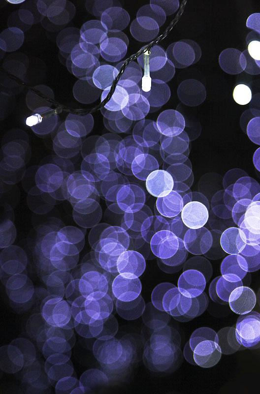 Light IMG_0041-w