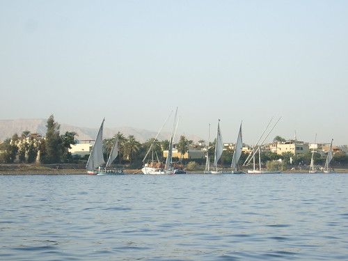 Feluccas with Sails Up