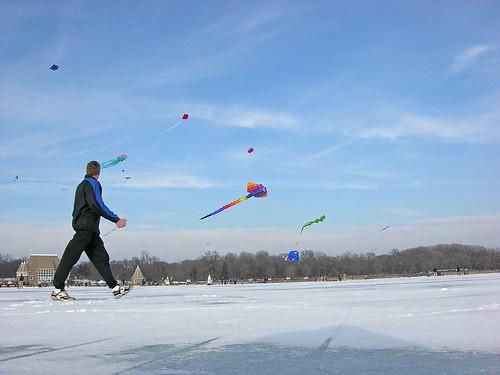 Winter Kite Festival 2006 stroll