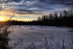 Snowy Sapsucker (agladshtein) Tags: winter snow newyork frozen cny centralnewyork ithaca hdr scenics cornelluniversity tompkinscounty beautyinnature sapsuckerwoods cornelllabofornithology nikkor18200mmvr coldtemperature nikond300