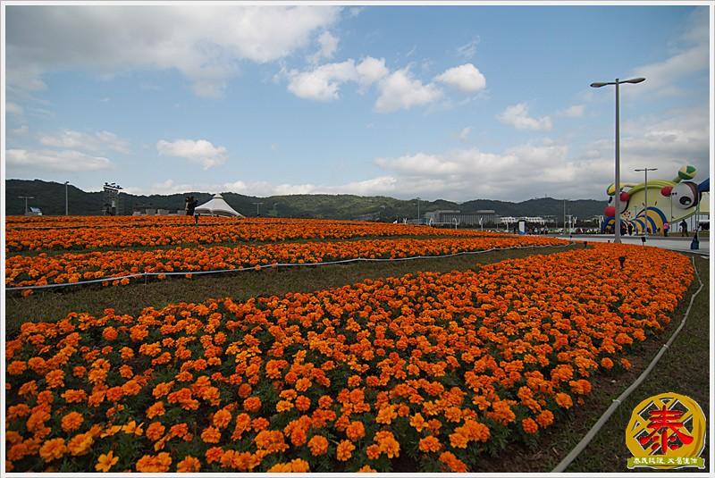 2011.01.01 花博02 - 大佳河濱公園-5
