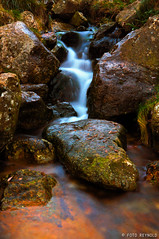 Nacimiento del ro Mio (Foto Reynold) Tags: espaa galicia ros lugo mio fuentes nacimiento manantiales meira cascadas pedregal irimia colorphotoaward