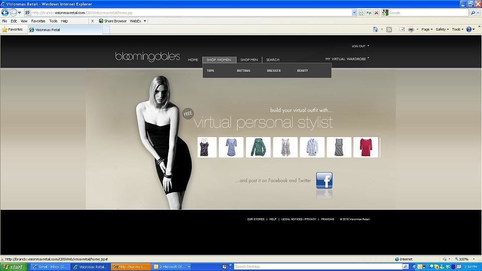 Online Shopping Experience with Virtual Personal Stylist