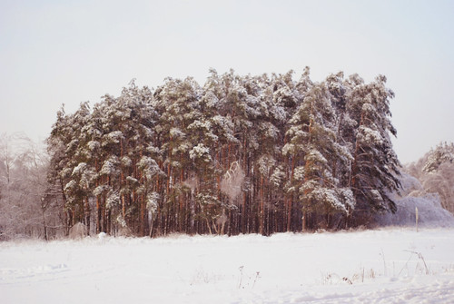 It`s winter my love!<3