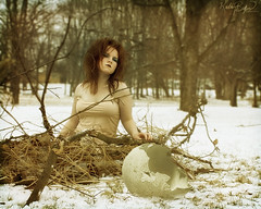 Day Seven (KatB Photography) Tags: wood trees woman selfportrait snow bird broken nature female forest outside sticks dof nest branches egg messyhair 365 twigs birdnest project365 365the2011edition