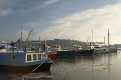 7 (thedispossessed) Tags: winter sea snow cold ice marina dock estuary woodbridge