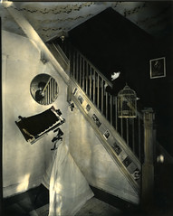 self portrait in black and white (lauren.rabbit) Tags: sepia 8x10 hp5 bender sprint selenium deardorff adox
