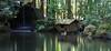 Pour (Aaron Webb) Tags: longexposure japan garden waterfall pond kyoto 京都 日本 nanzenji kyotojapan formalgarden japanday7 南禅寺 園 nanzenjigarden