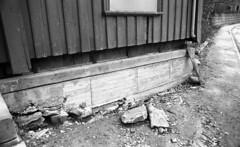 Trenerygården / Arbeidshjemmet - Øvre Bakklandet 1 B, detalj eksteriør (1978)
