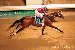 Tapizar breaks his maiden (creepy_coyote) Tags: maiden churchilldowns tapizar steveasmussen shanbridgmohan