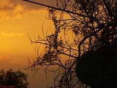 el atardecer de hoy (Mex::::::Gabriel:::Parker::::::Arg. 2016 images) Tags: paisajes sol sunsets atardeceres contrastes trilogias