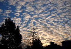 Early Morning Sky (Eleanor (No multiple invites please)) Tags: thecloudappreciationsociety wonderfulworldmix betterthangood amiamoci screamofthephotographer belledecontrejour