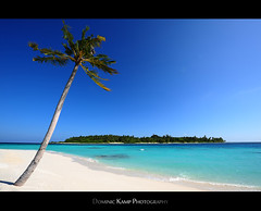 Palm Beach Island (Dominic Kamp) Tags: blue white green beach water relax island sand nikon turquoise no palm maldives stress dominic kamp d700