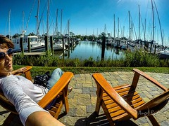 Say You'll Never Let Me Go (AngelBeil) Tags: goprohero4black herringtonharbour chairswithaview adirondack marina boats goodmorning shoreliving chesapeakebay baylife